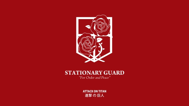 stationary guard